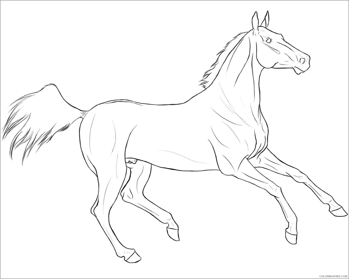 Horses Coloring Pages Animal Printable Sheets lineart 2021 2718 Coloring4free