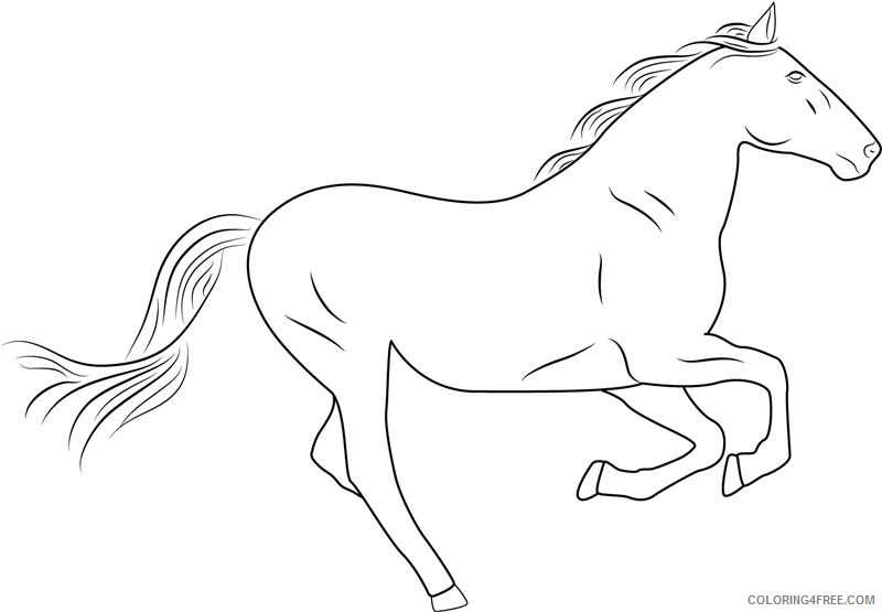 Horses Coloring Pages Animal Printable Sheets silver horse1 2021 2811 Coloring4free