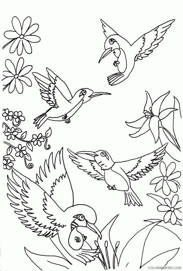 Hummingbird Coloring Sheets Animal Coloring Pages Printable 2021 2487 Coloring4free