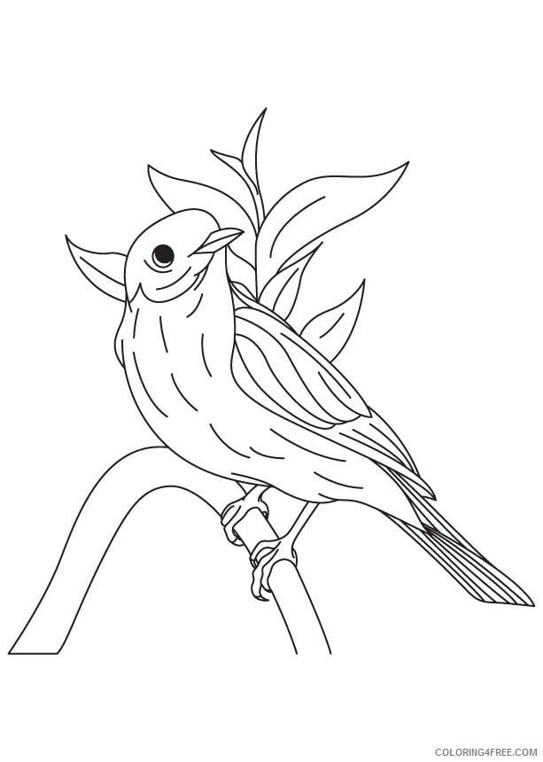 Hummingbird Coloring Sheets Animal Coloring Pages Printable 2021 2497 Coloring4free