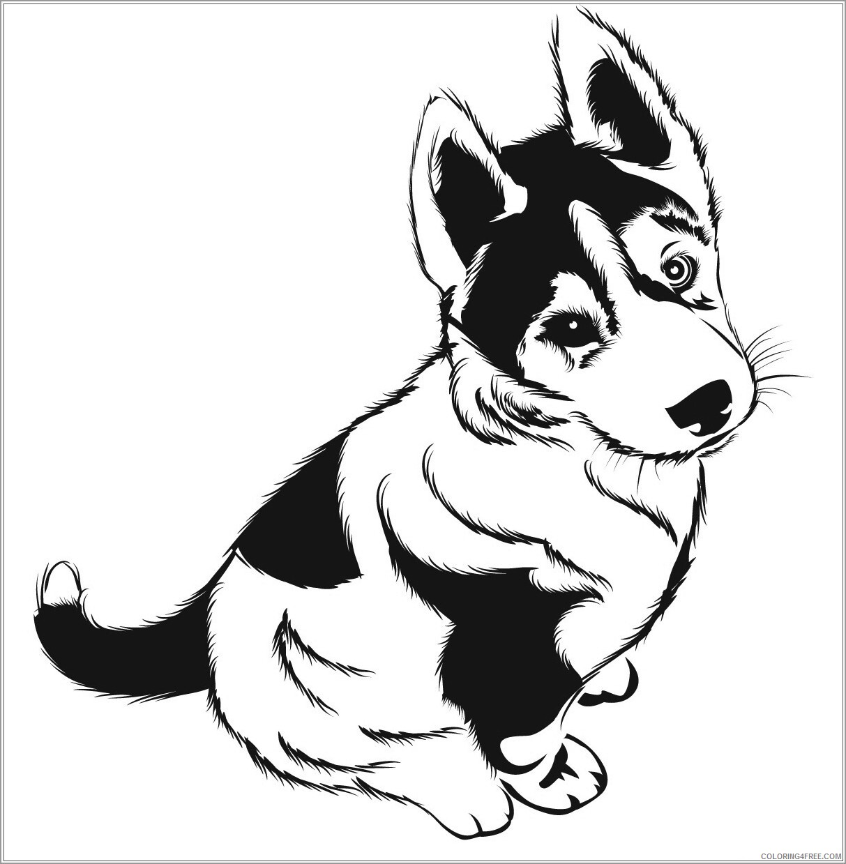 Husky Coloring Pages Animal Printable Sheets husky puppies 2021 2844 Coloring4free