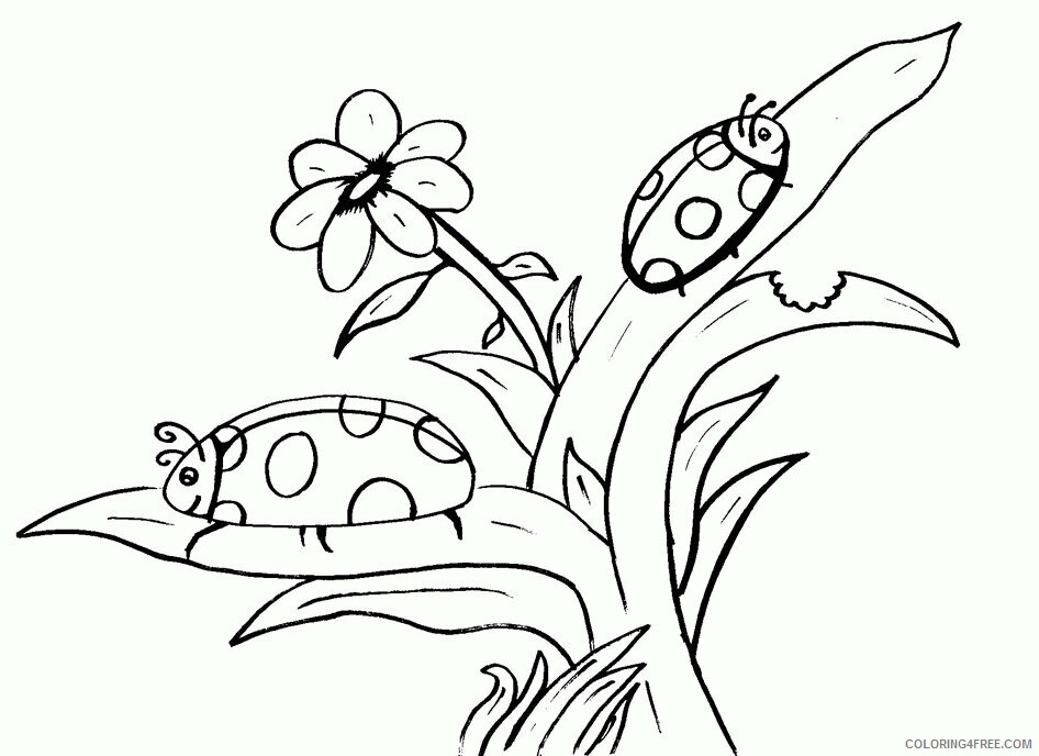 Insect Coloring Sheets Animal Coloring Pages Printable 2021 2537 Coloring4free
