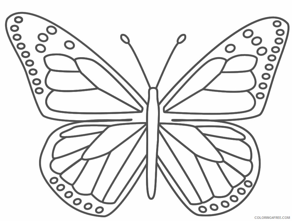 Insect Coloring Sheets Animal Coloring Pages Printable 2021 2541 Coloring4free