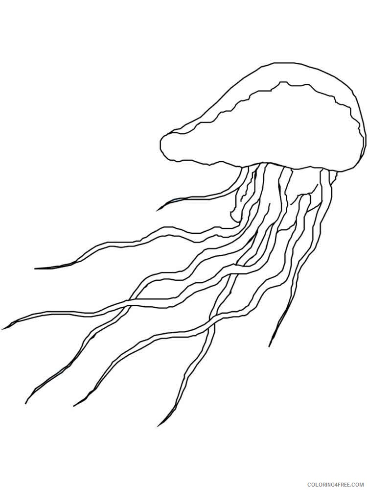 Jellyfish Coloring Pages Animal Printable Sheets Jellyfish 8 2021 2931 Coloring4free