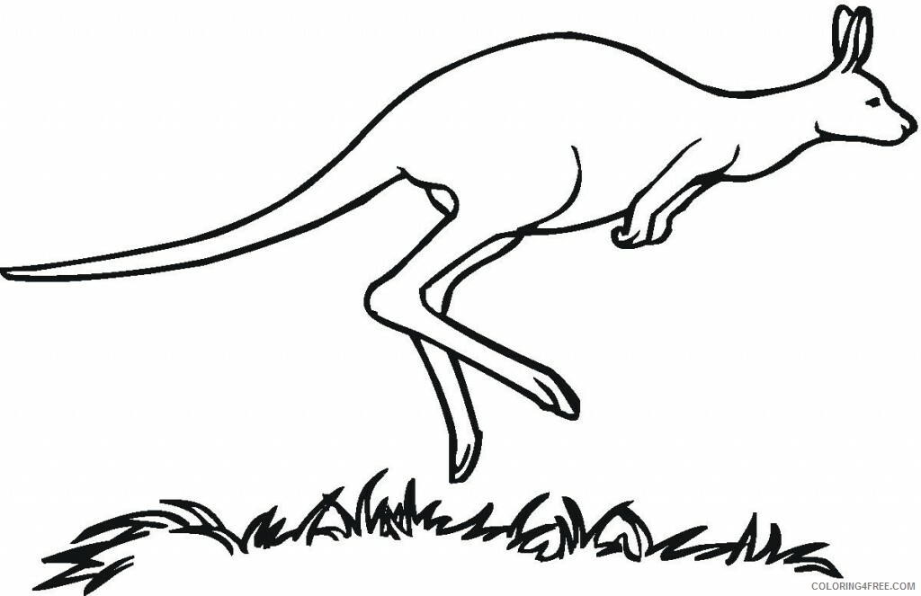 Kangaroo Coloring Sheets Animal Coloring Pages Printable 2021 2600 Coloring4free