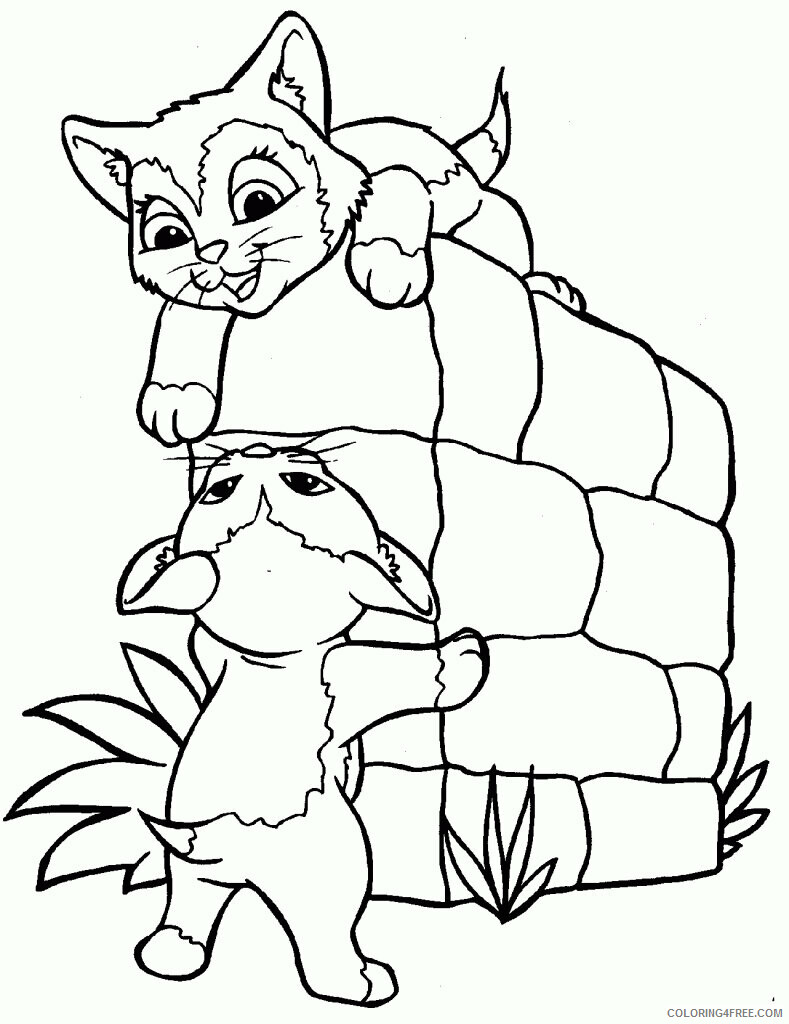 Kitten Coloring Pages Animal Printable Sheets Free Kitten 2021 2985 Coloring4free