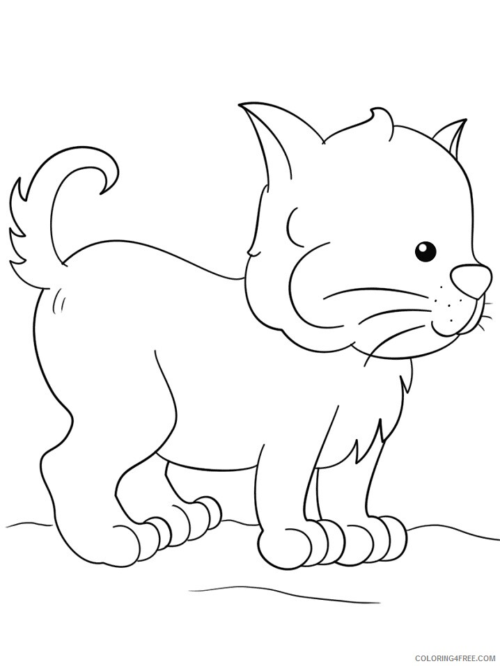 Kitten Coloring Pages Animal Printable Sheets lovely kitten 2021 3016 Coloring4free