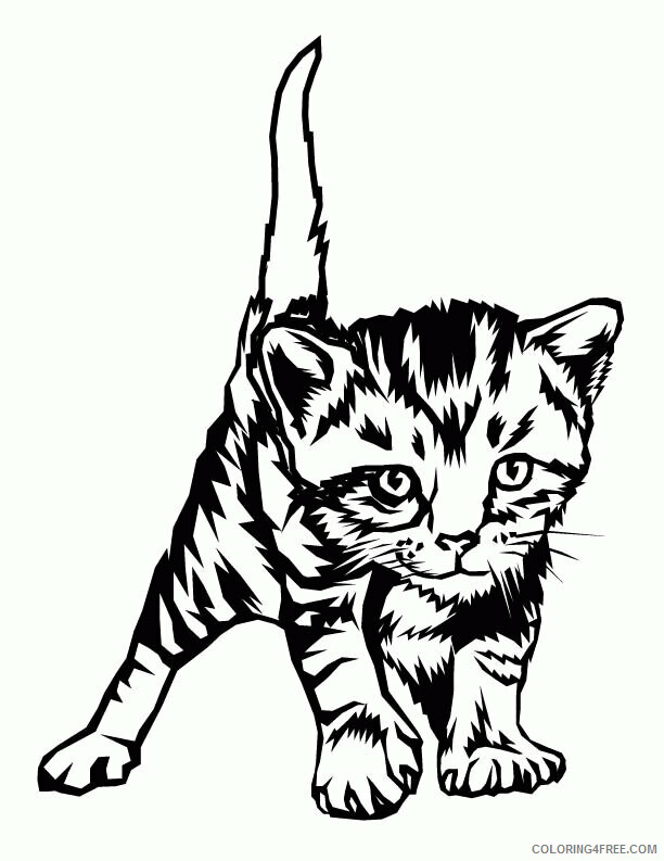 Kitten Coloring Sheets Animal Coloring Pages Printable 2021 2664 Coloring4free