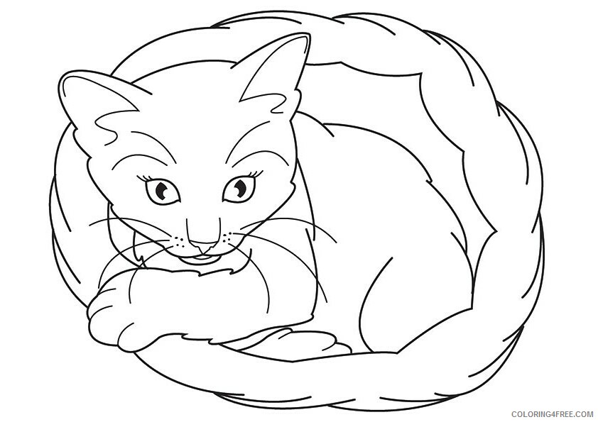 Kitten Coloring Sheets Animal Coloring Pages Printable 2021 2671 Coloring4free Coloring4free Com