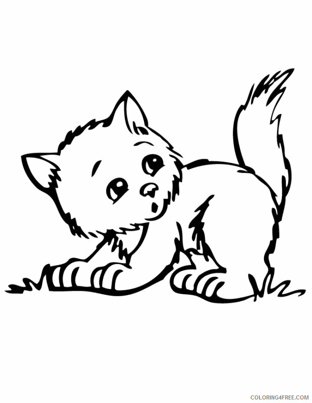 Kitten Coloring Sheets Animal Coloring Pages Printable 2021 2699 Coloring4free