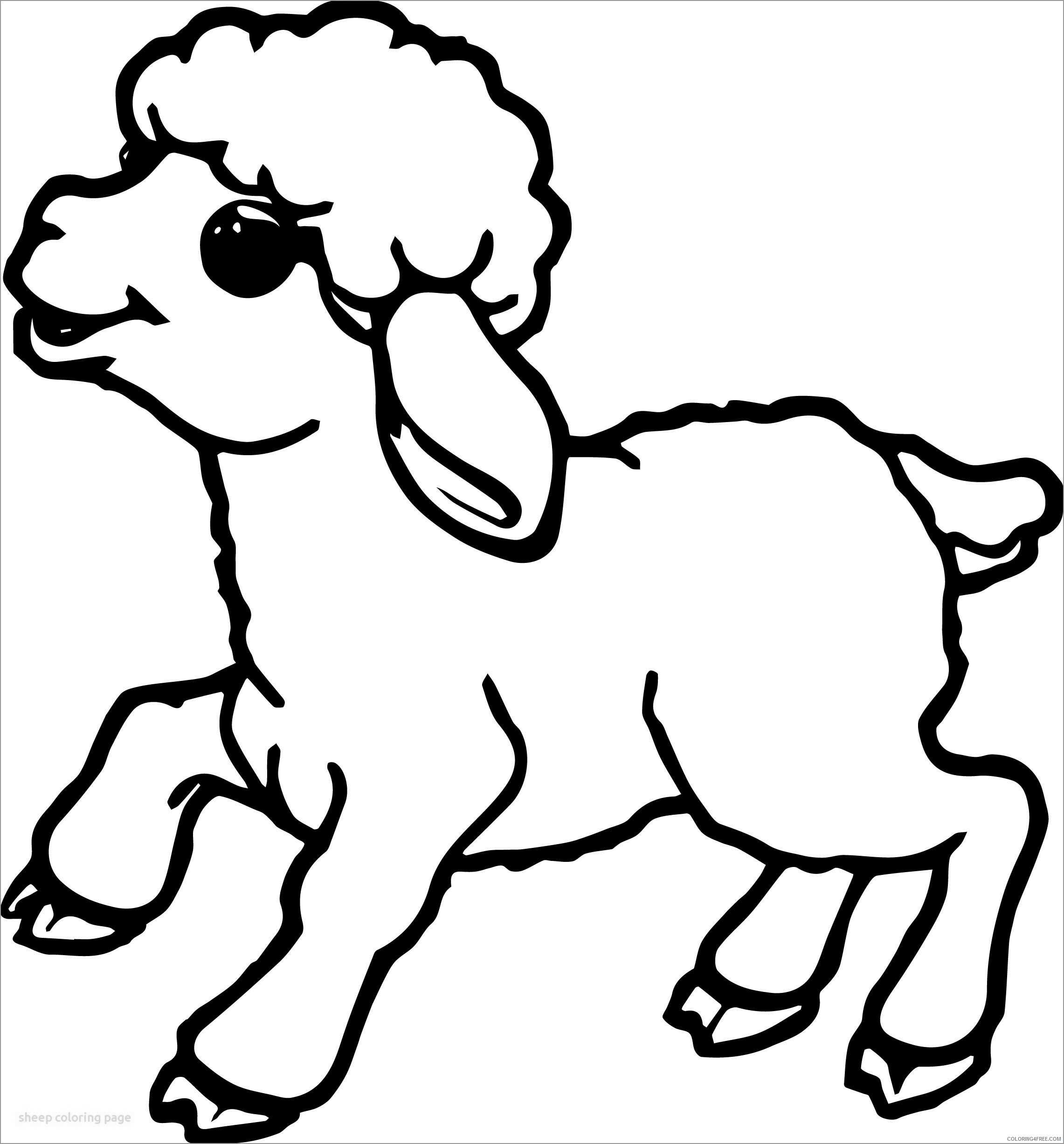 Lamb Coloring Pages Animal Printable Sheets lamb baby 2021 3125 Coloring4free