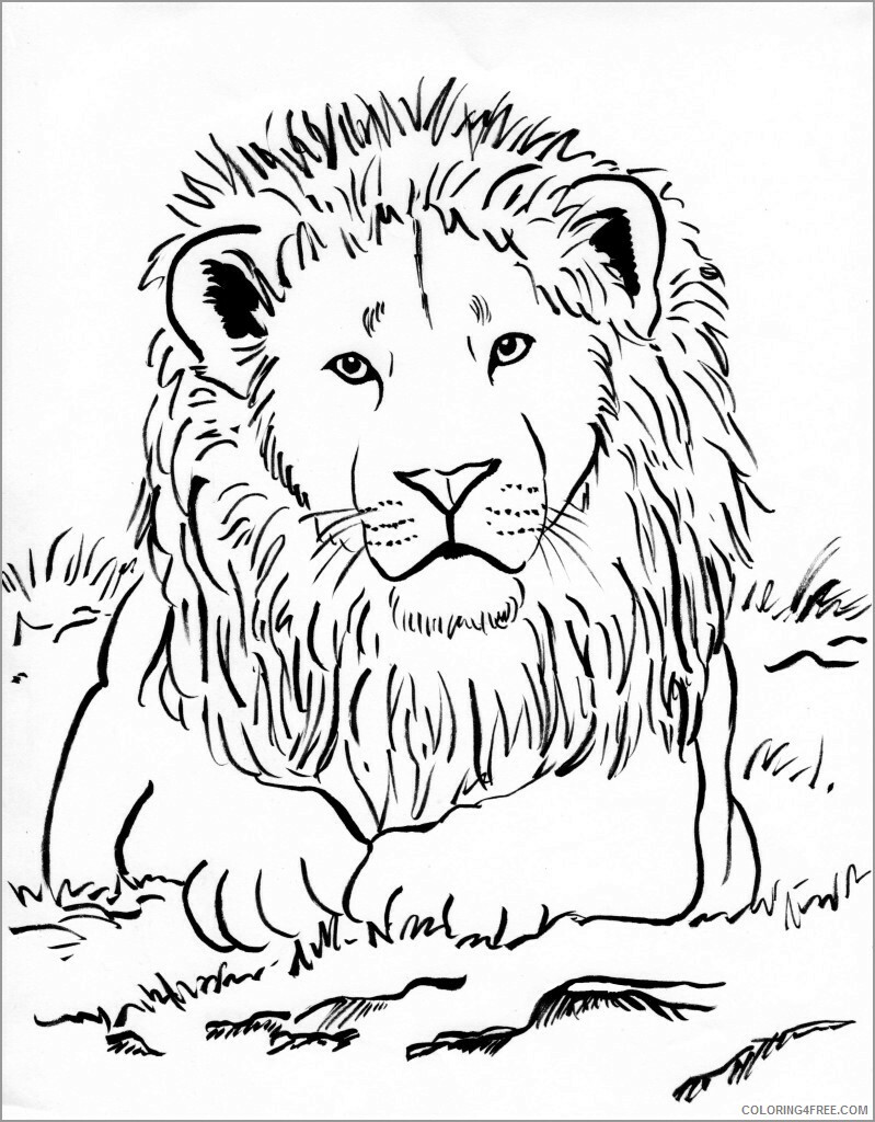 Lion Coloring Pages Animal Printable Sheets cute lion 2021 3161 Coloring4free