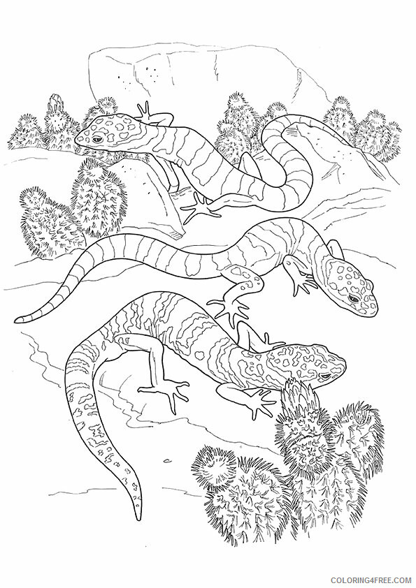 Lizard Coloring Sheets Animal Coloring Pages Printable 2021 2849 Coloring4free