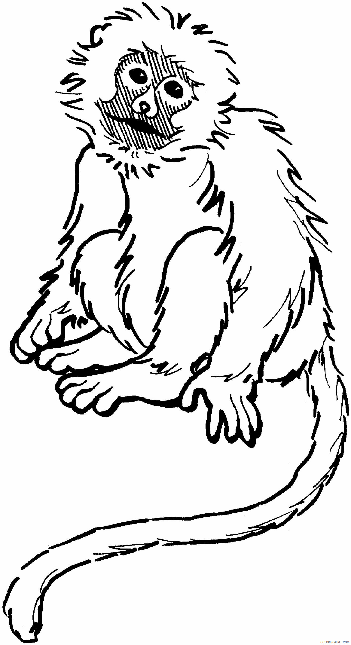 Monkey Coloring Pages Animal Printable Sheets Free Monkey 2021 3305 Coloring4free