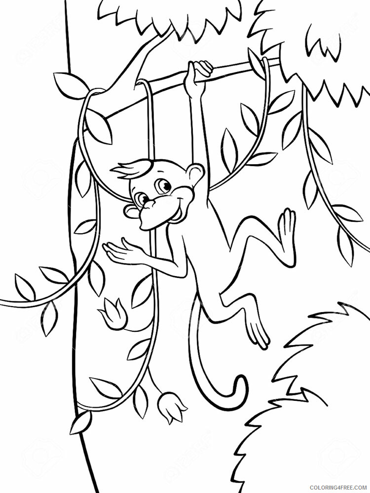 Monkey Coloring Pages Animal Printable Sheets Monkey animal 365 2021 3328 Coloring4free