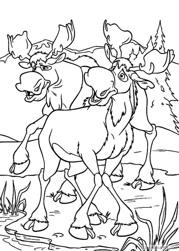 Moose Coloring Pages Animal Printable Sheets Moose 2021 3377 Coloring4free