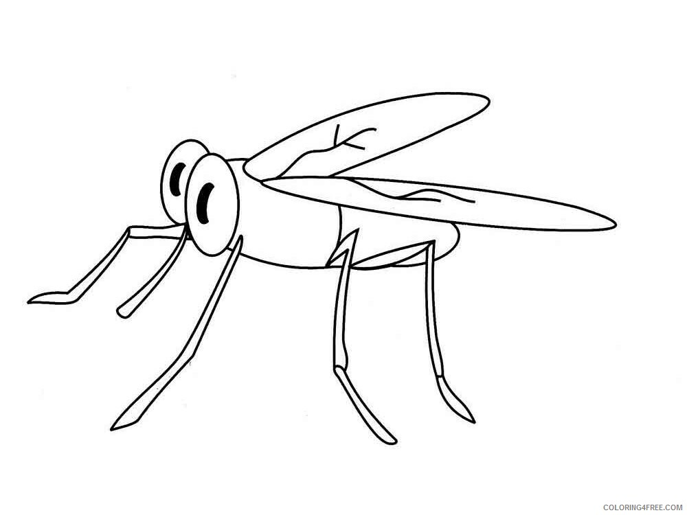 Mosquito Coloring Pages Animal Printable Sheets Mosquito 2 2021 3385 Coloring4free