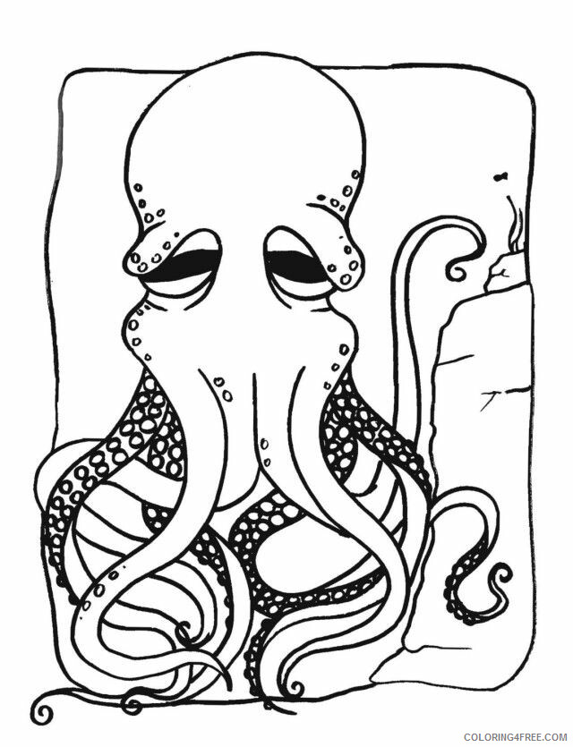 Octopus Coloring Sheets Animal Coloring Pages Printable 2021 2960 Coloring4free
