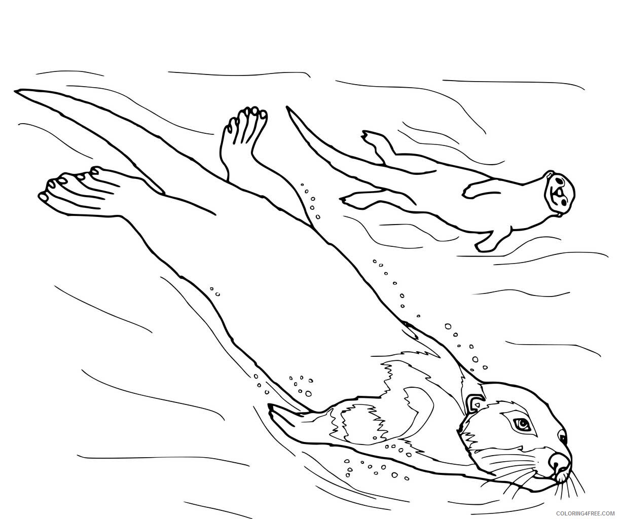 Otter Coloring Pages Animal Printable Sheets Otter 2021 3586 Coloring4free