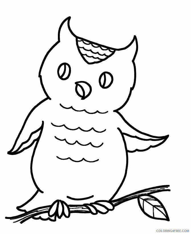 Owl Coloring Pages Animal Printable Sheets Easy Owl 2021 3625 Coloring4free