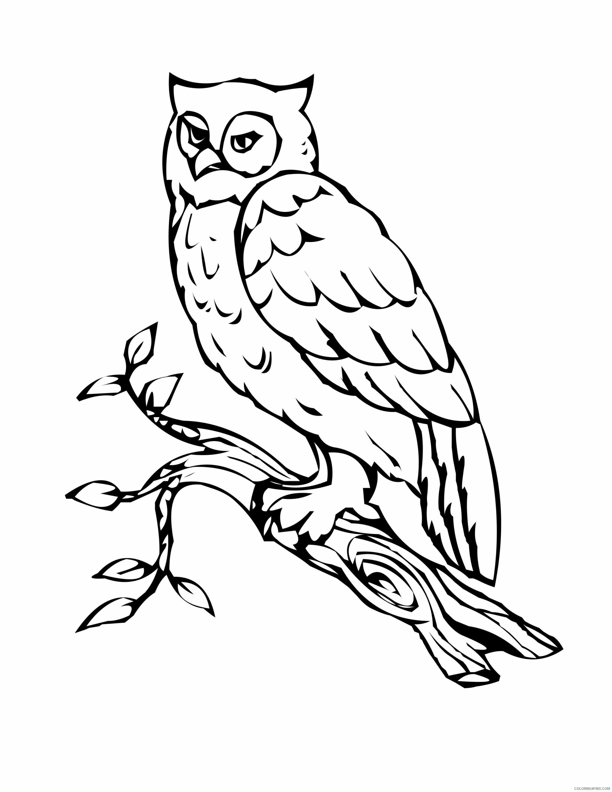 Owl Coloring Pages Animal Printable Sheets Free Owl 2021 3631 Coloring4free