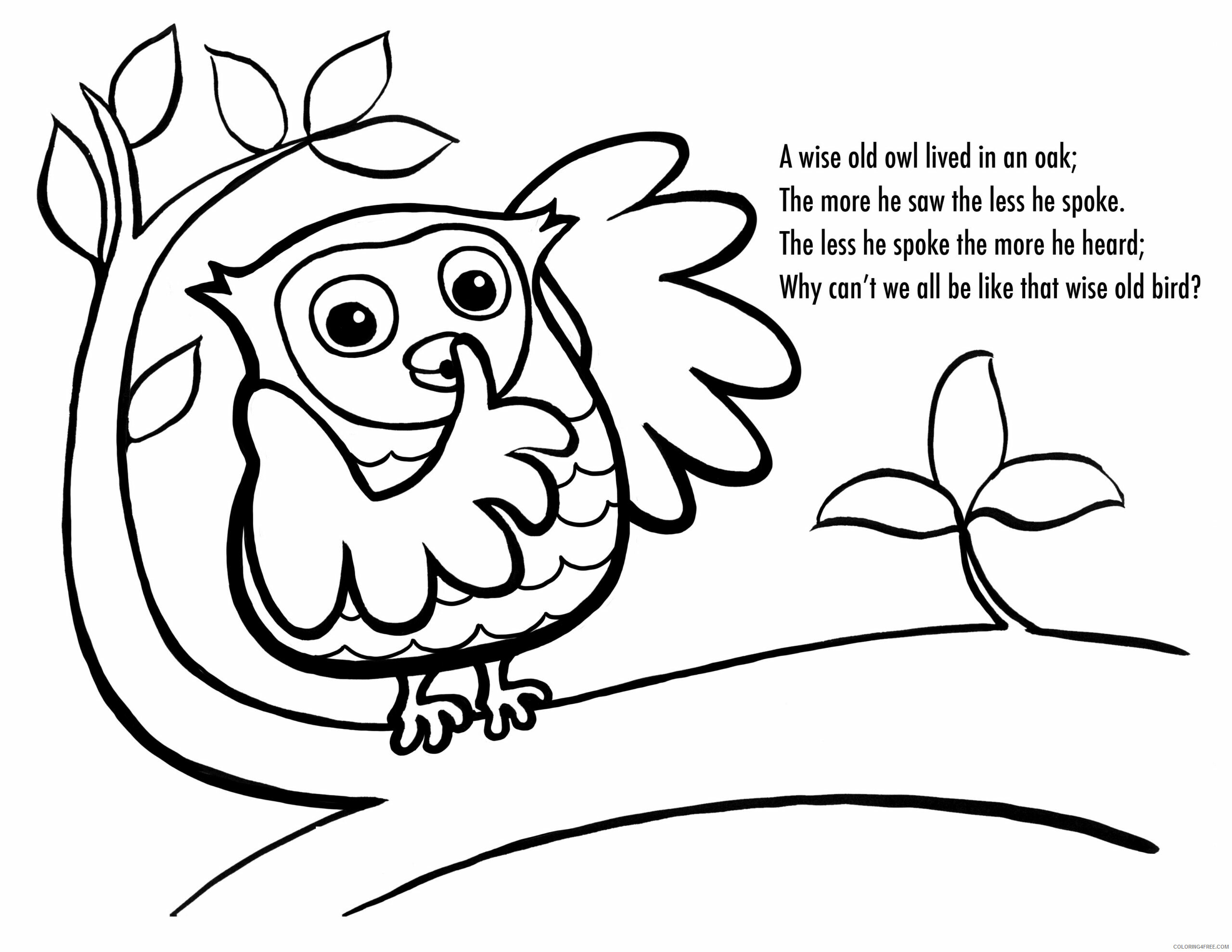Owl Coloring Pages Animal Printable Sheets Owl 2021 3654 Coloring4free