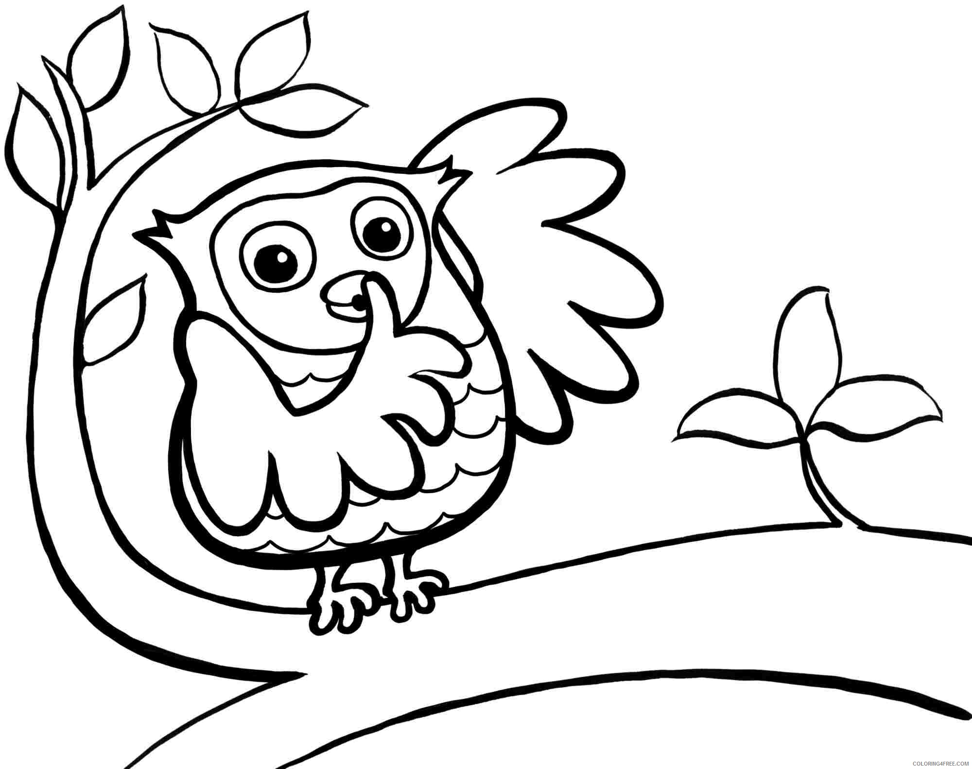 Owl Coloring Pages Animal Printable Sheets Owl for Toddlers 2021 3645 Coloring4free