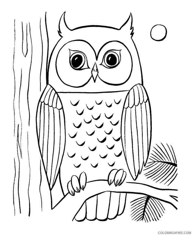 Owl Coloring Sheets Animal Coloring Pages Printable 2021 3051 Coloring4free