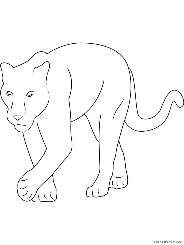 Panther Coloring Pages Animal Printable Sheets panther 1 2021 3704 Coloring4free