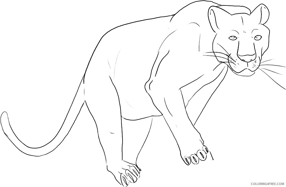 Panther Coloring Sheets Animal Coloring Pages Printable 2021 3142 Coloring4free