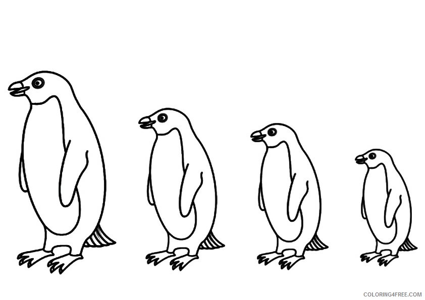 Penguin Animal Coloring Pages Printable 2021 3216 Coloring4free