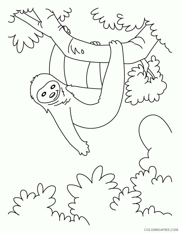 Sloth Coloring Sheets Animal Coloring Pages Printable 2021 4176 Coloring4free
