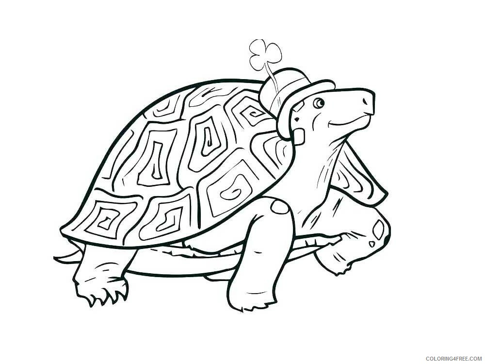 Tortoise Coloring Pages Animal Printable Sheets Tortoise 13 2021 4807 Coloring4free