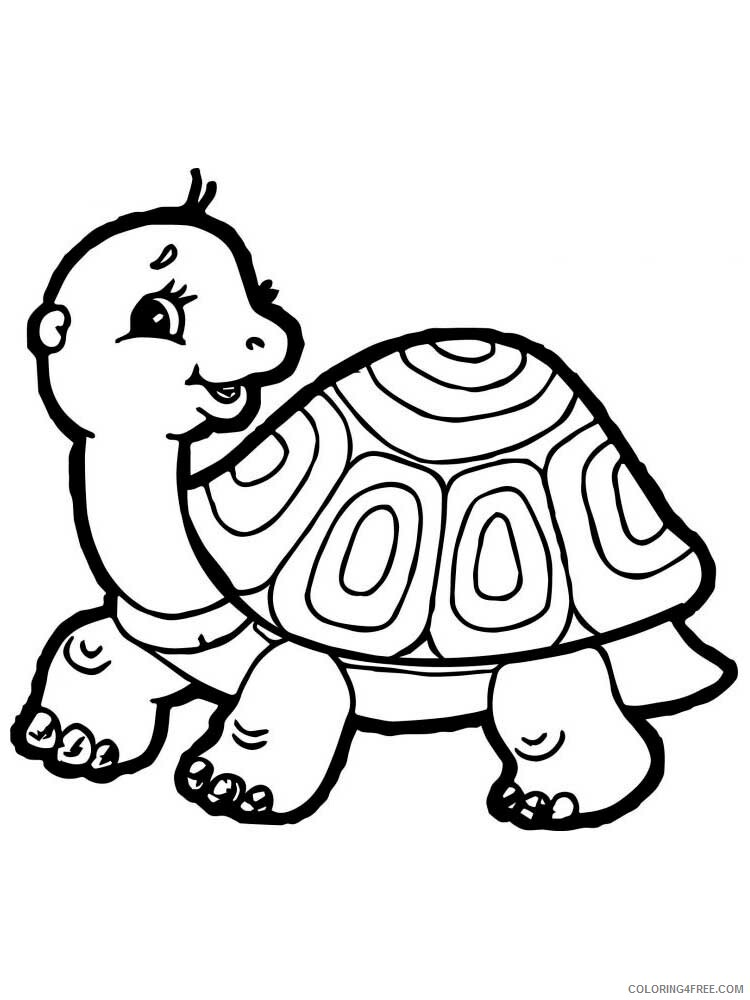 Tortoise Coloring Pages Animal Printable Sheets Tortoise 8 2021 4812 Coloring4free