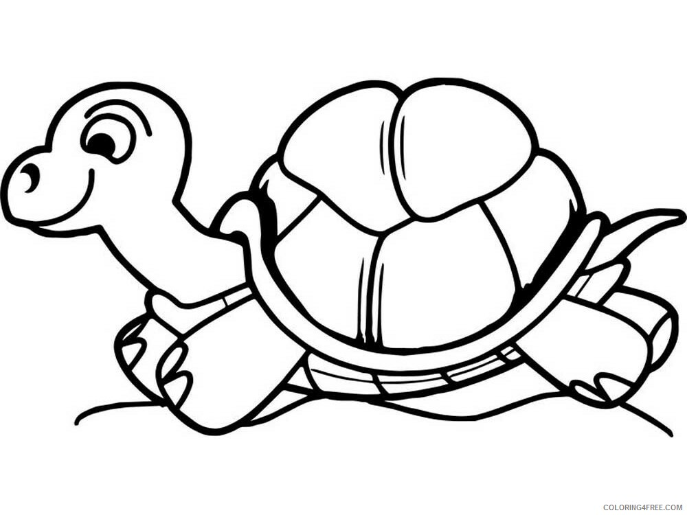 Tortoise Coloring Pages Animal Printable Sheets Tortoise 9 2021 4813 Coloring4free