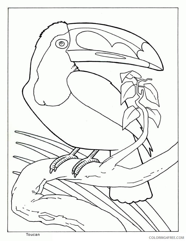 Az Coloring Pages of Animals Printable Sheets Animals Realistic Nucoloring 2021 a 4443 Coloring4free