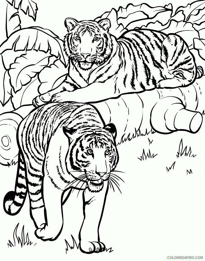 Az Coloring Pages of Animals Printable Sheets Preschoolers Realistic Dog Pages 2021 a 4459 Coloring4free